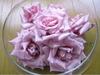 Rosepopri